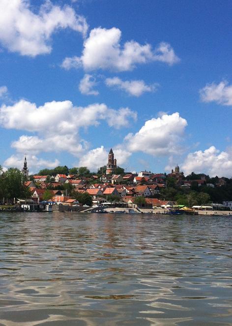 Taste of Danube